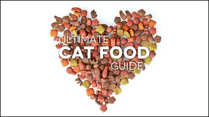 best cat food reviews