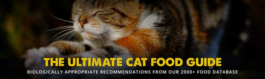 The Best Cat Food For 2019 Reviews And Ratings Of Top Wet Dry Brands