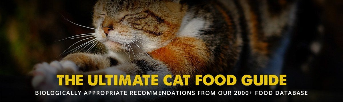 The 8 Best Cat Food Reviews From Our Insanely Huge Food Database,Kabocha Squash Size