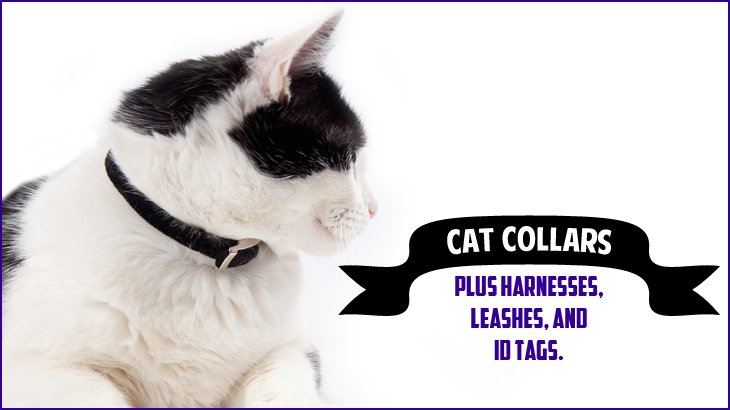 Best Collars Harnesses Leashes To Keep Big And Small Cats Safe