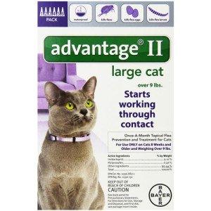 advantage_flea_control