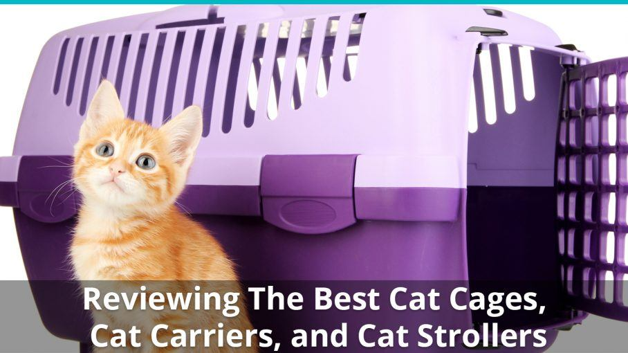 cat cages carriers strollers