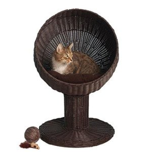 kitty_ball_rattan_unique_bed_1