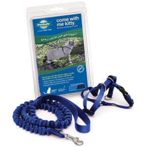 petsafe_harness_1