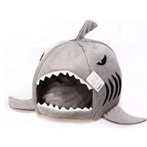 shark_bed
