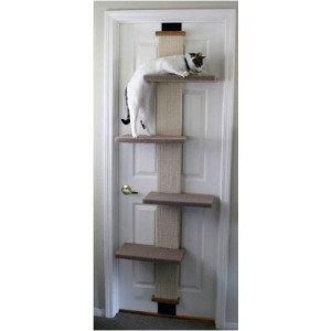 smartcat_climber