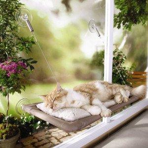 sunny_seat_window_bed_1