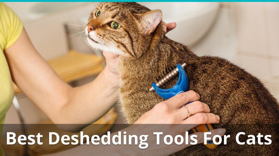 best deshedding tools for cats