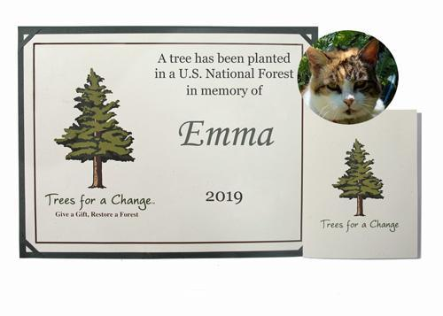 trees for a change pet memorial