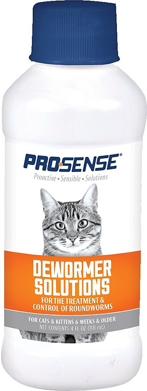 How To Deworm Cats And Kittens Plus The Best Dewormer