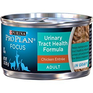 Purina ProPlan Focus Urinary Tract Health Formula Chicken Entree Wet Cat Food