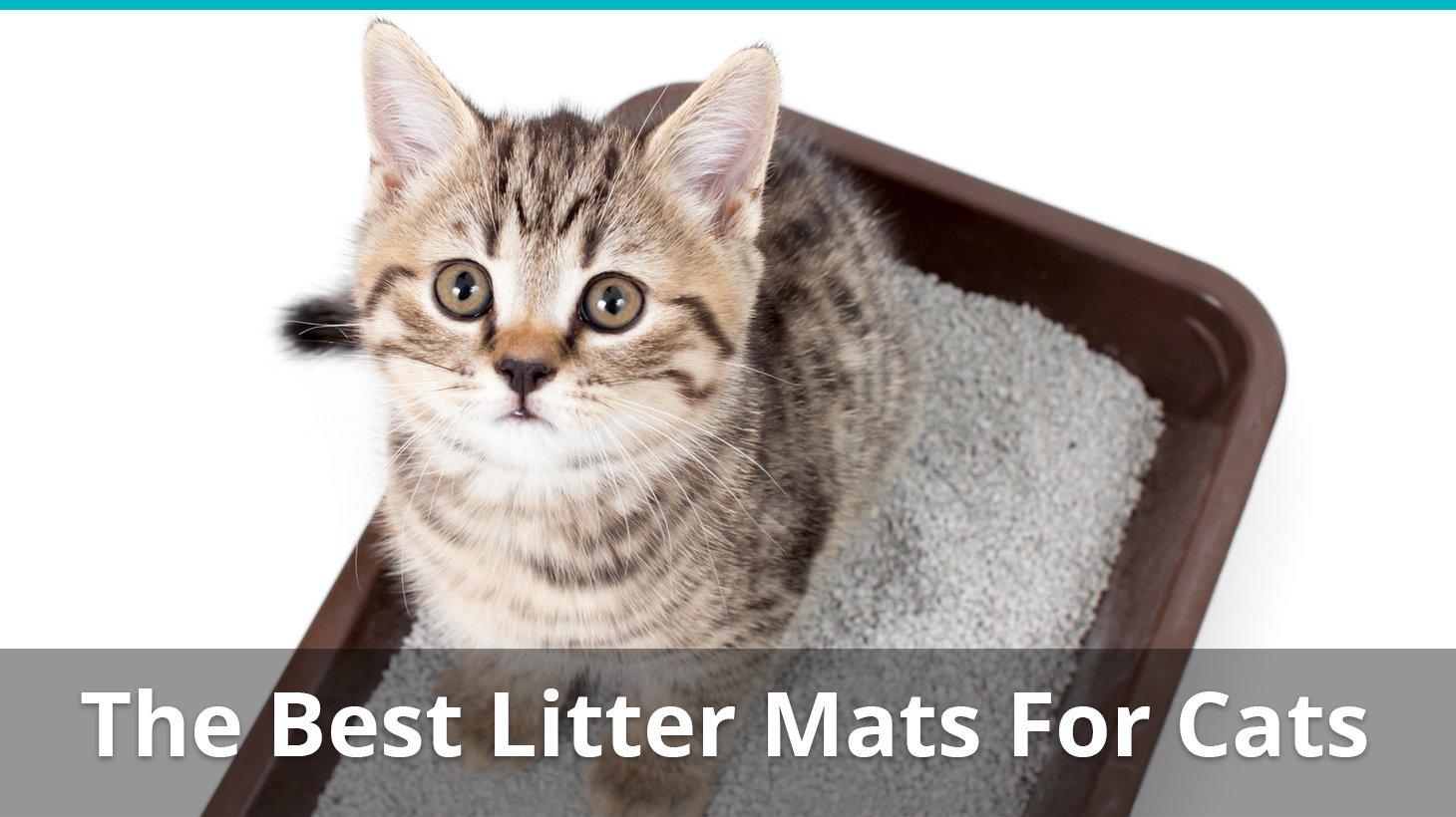 Cat S Litter Tray Mats