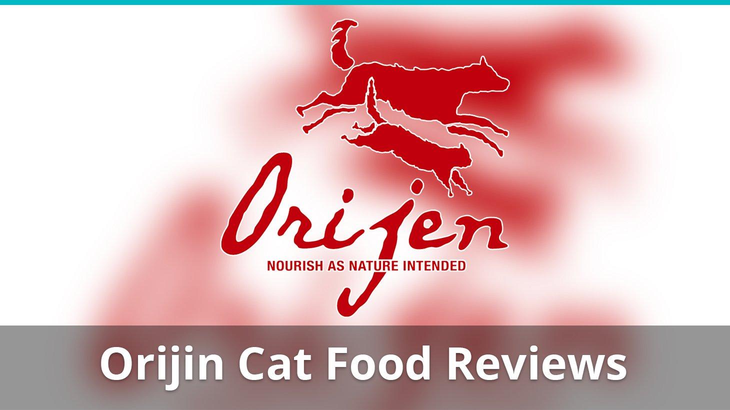 Review Of Orijen Best Dry Cat Food
