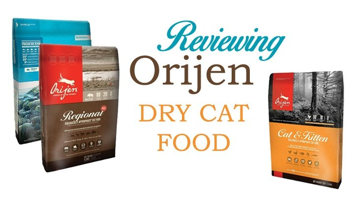 Natural High Protein Cat Food