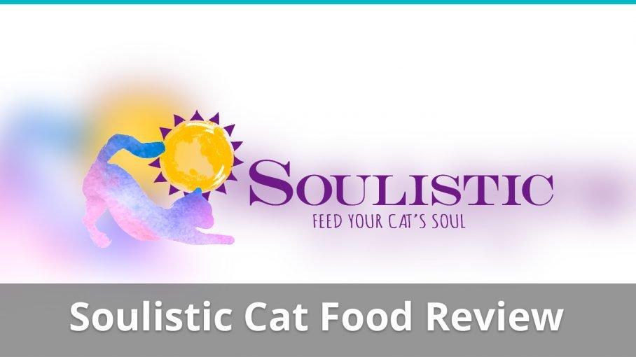 soulistic cat food review