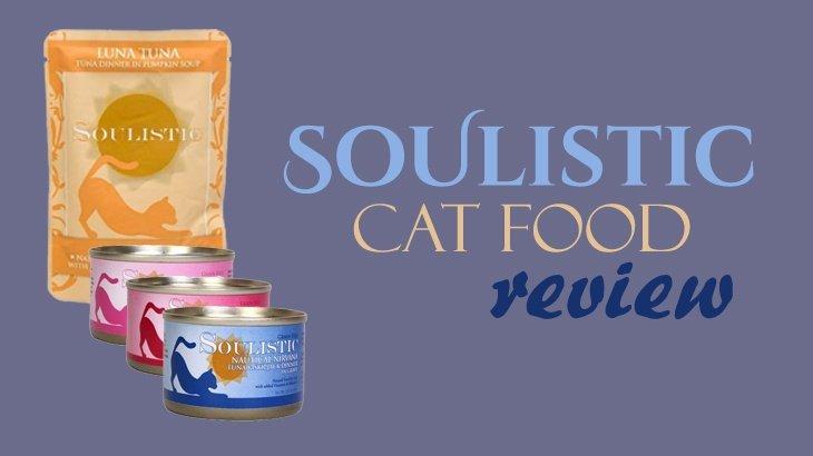 Soulistic Wet Cat Food Review
