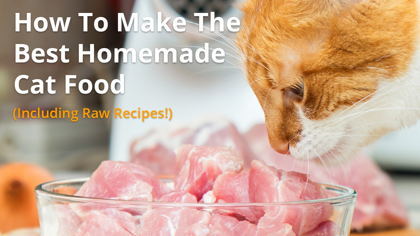 Homemade Cat Food and Raw Diet Recipes