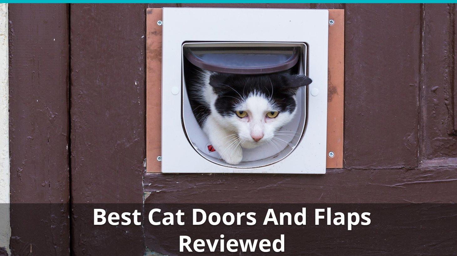 Exterior Cat Door Reviews