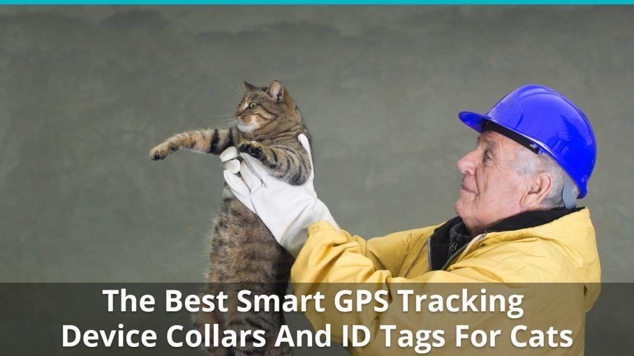 best gps collars
