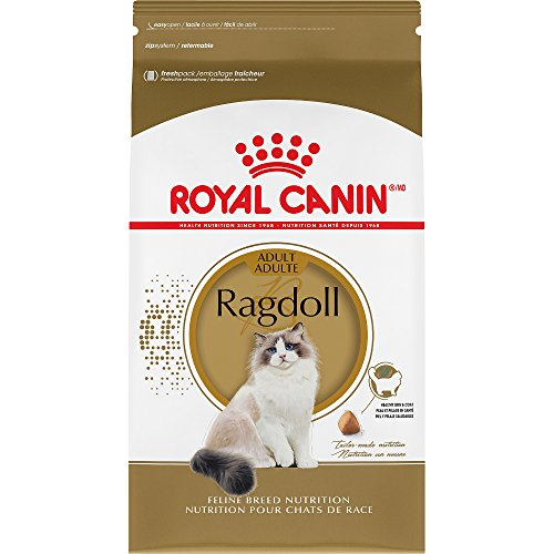 Dry Cat Food Big Pieces