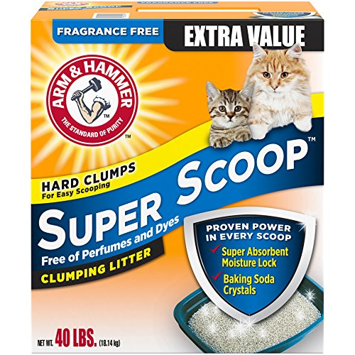 Unscented Cat Litter Brands