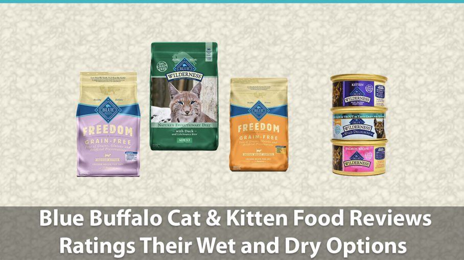 Blue Buffalo Cat & Kitten Food Reviews | Ratings Wet and Dry