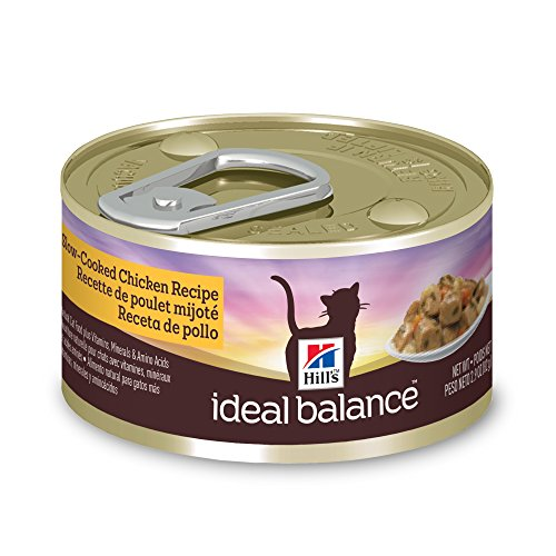 How Many Calories In Wet Dry Cat Food