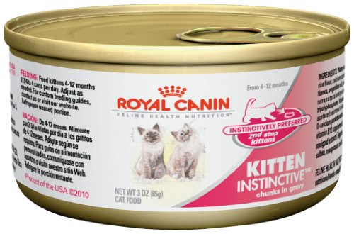 Top Canned Food For Kittens Food