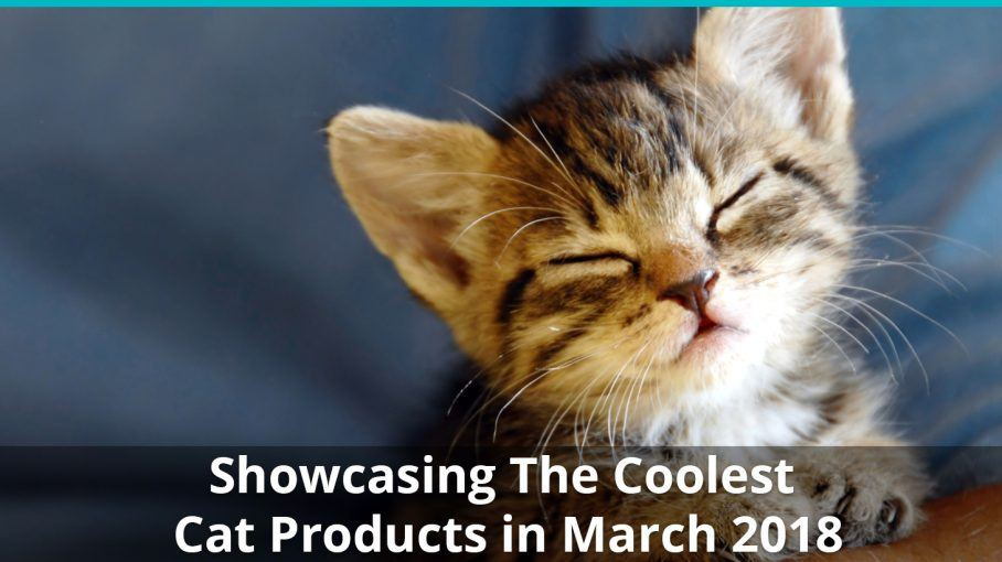 coolest cat products march 2018