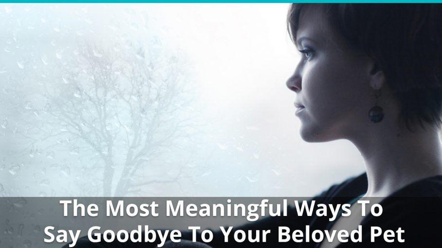 meaningful way goodbye pet