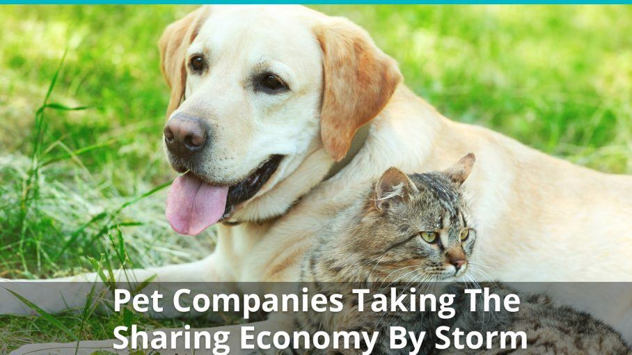 pet companies sharing economy