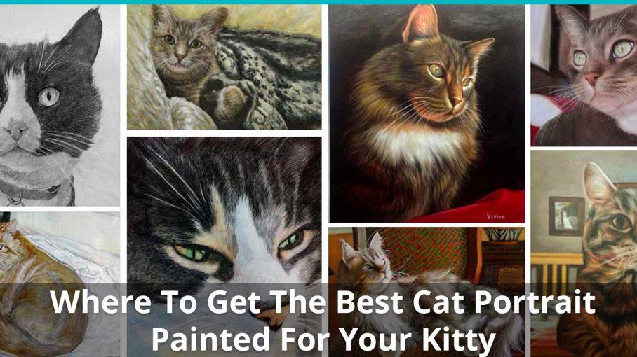 best cat portrait