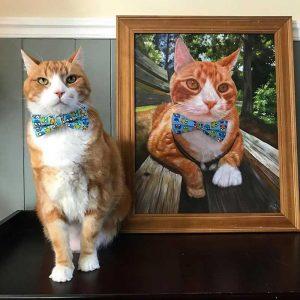 best cat portrait paint your life