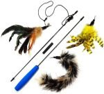 pet fit for life feather toy