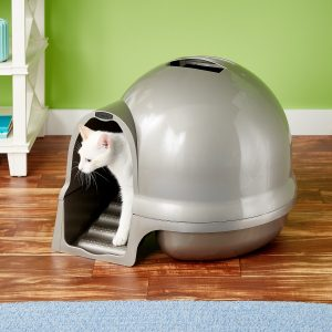 Best Cat Litter Boxes Reviewed Large Small MessyWeve Rated
