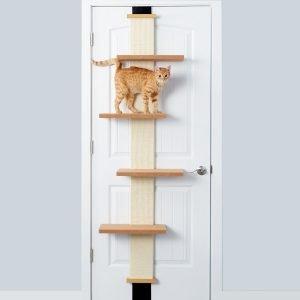 smartcat climber