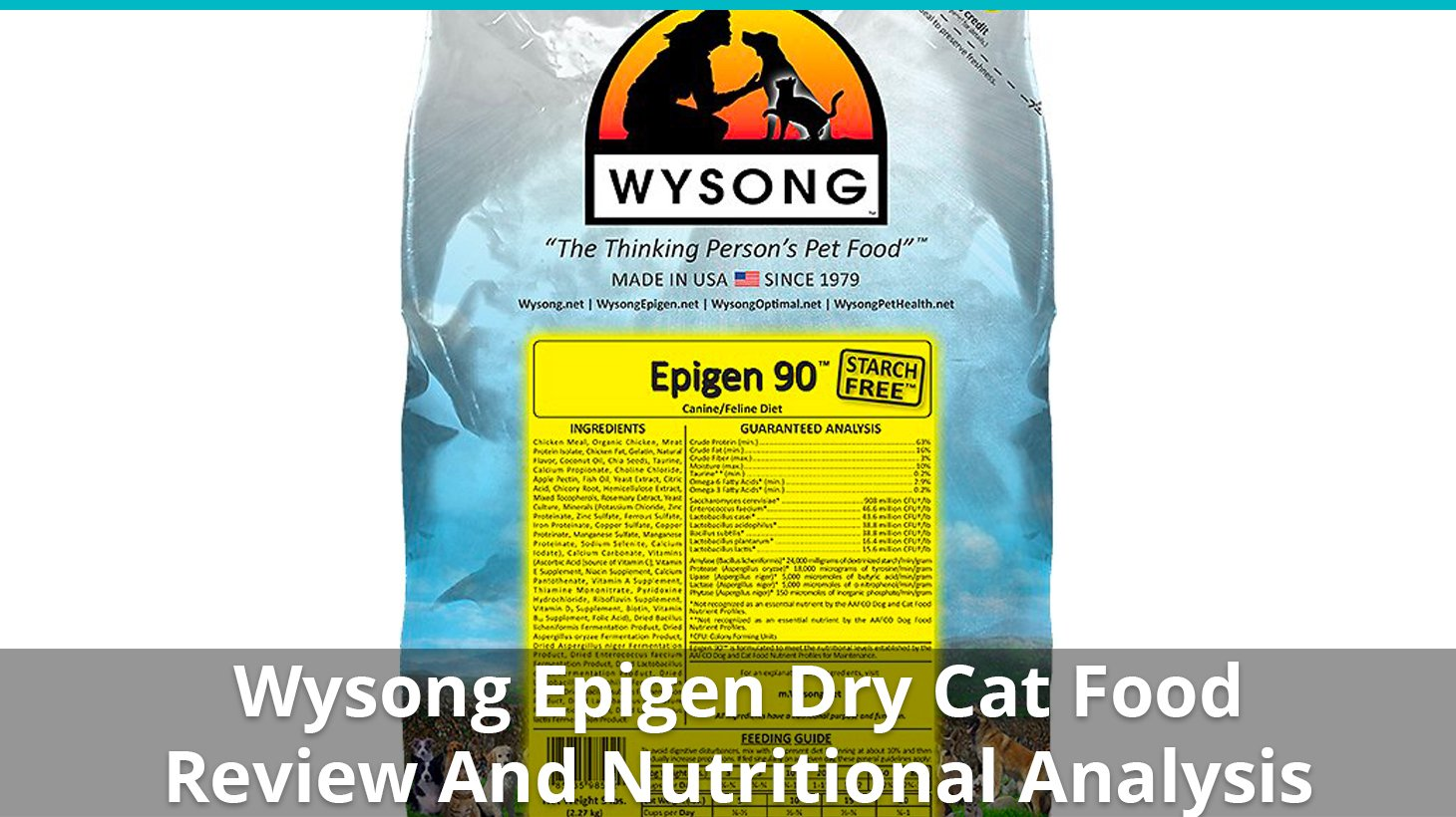 Wysong Epigen Cat Food Dry Review And Nutrition Analysis