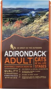 adirondack adult