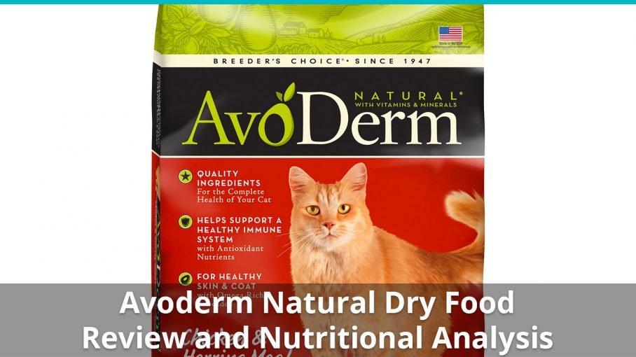 avoderm natural dry
