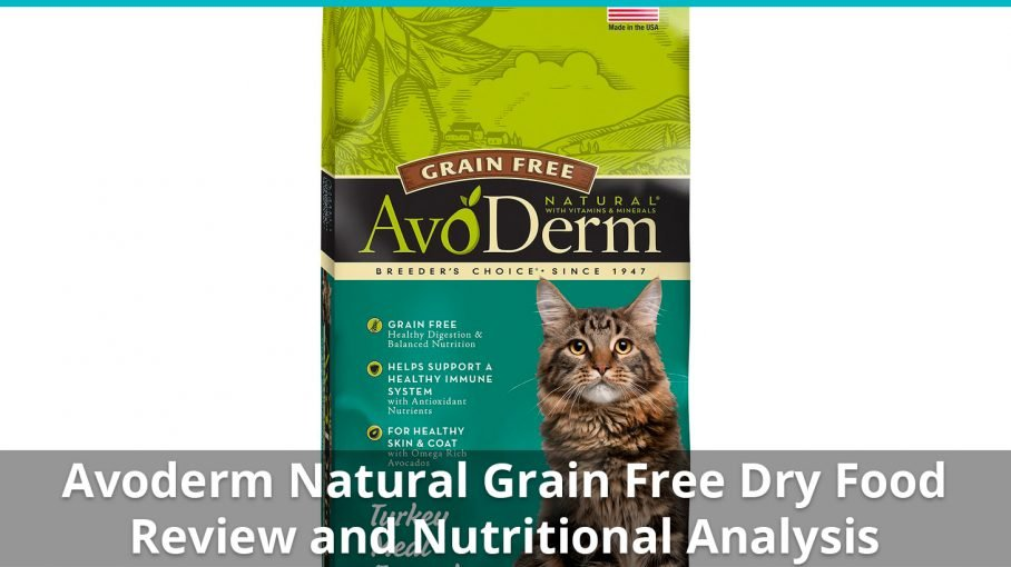 avoderm natural grain free dry