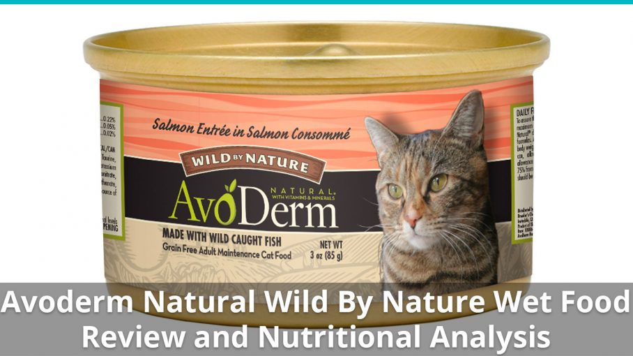 avoderm natural wild by nature wet