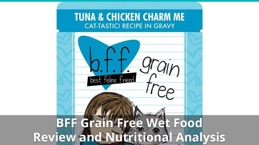 bff grain free wet