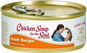 chicken soup wet