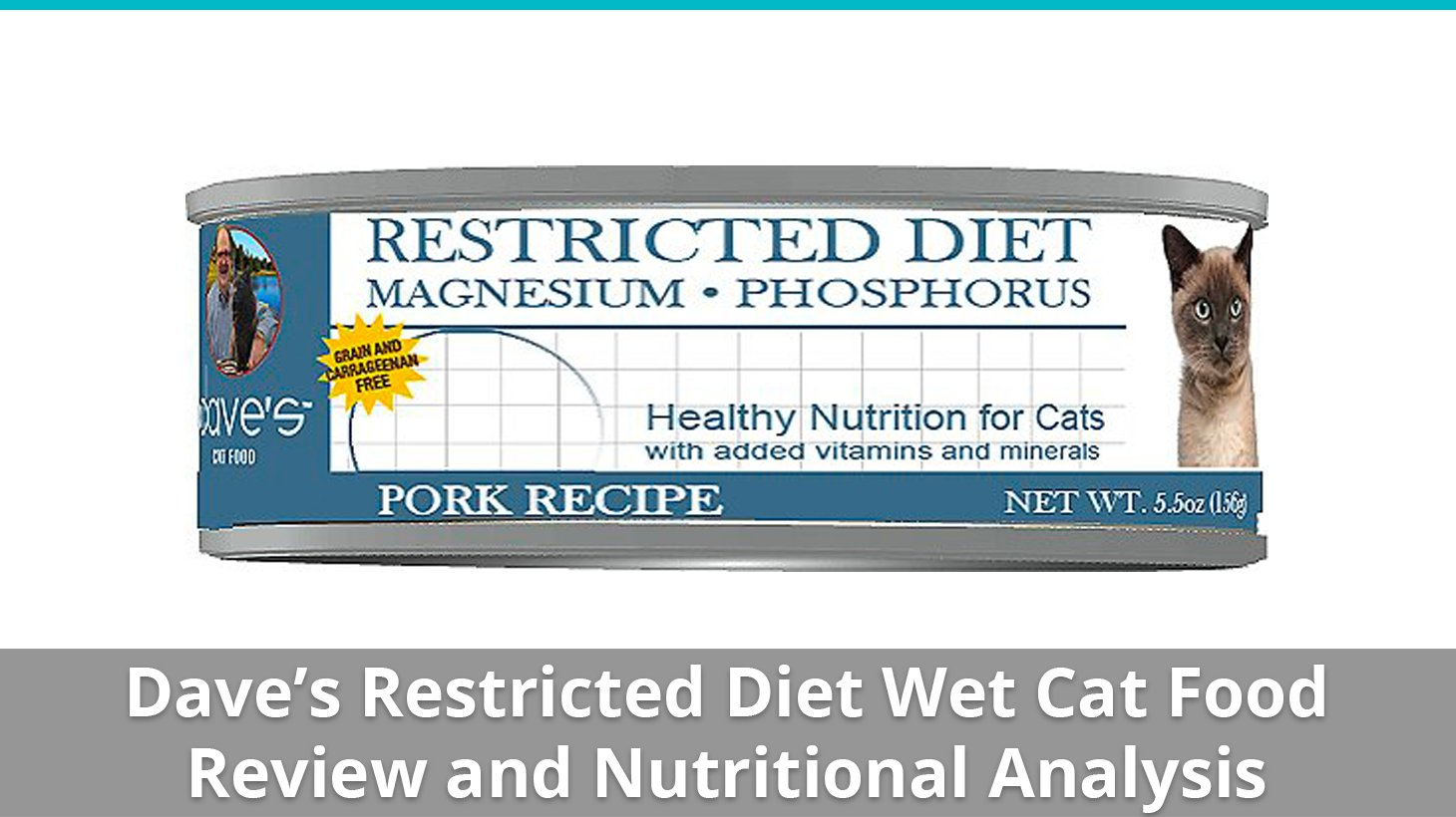 an introduction and an analysis of the product slim kitty a diet for cats Us department of health and human services study of negotiated risk agreements in assisted living: final report robert jenkensncb development corporation.