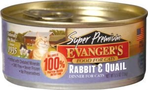 evangers super premium wet cat food can