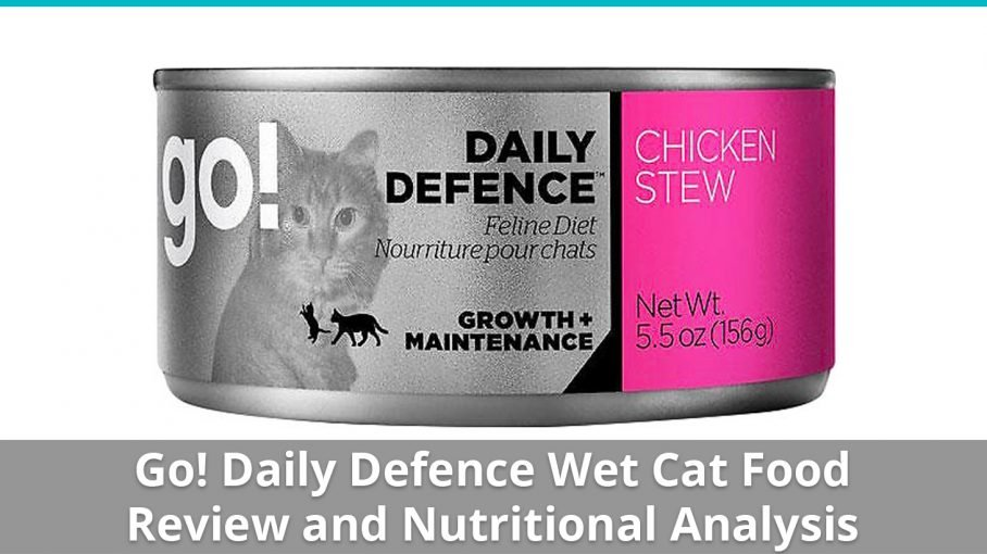 go daily defence