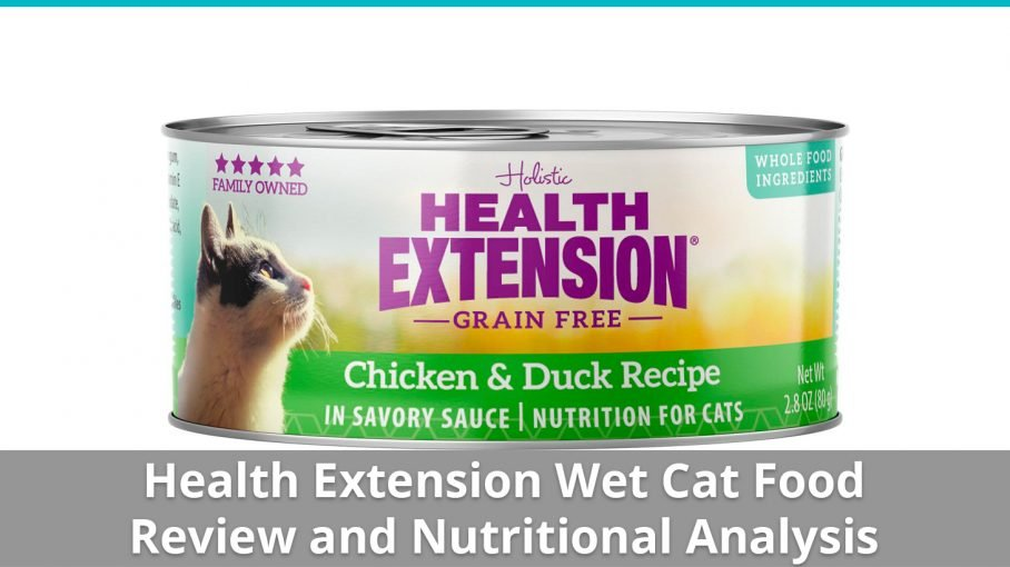 health extension wet