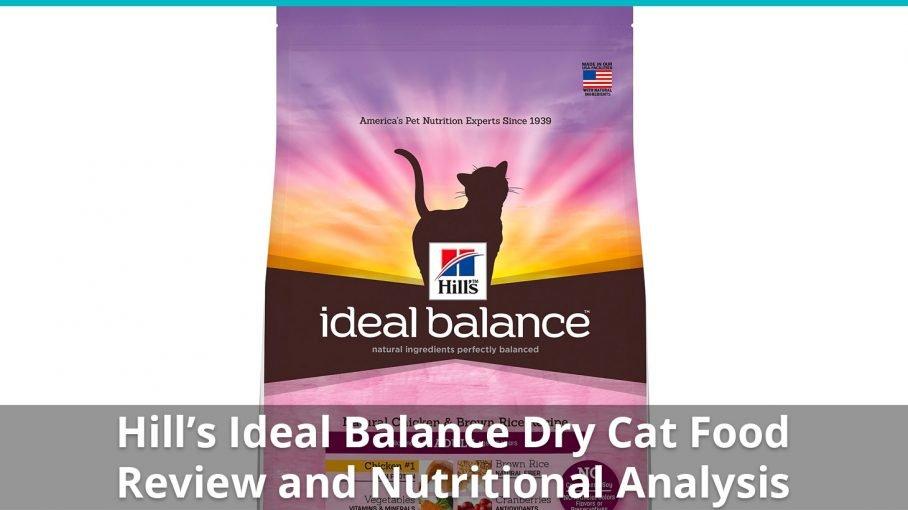 hills ideal balance dry