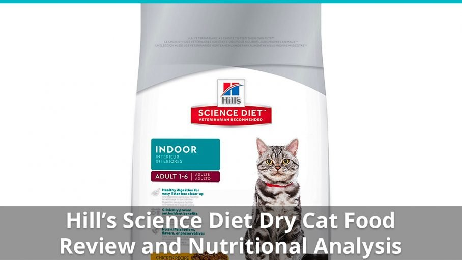 hills science diet dry
