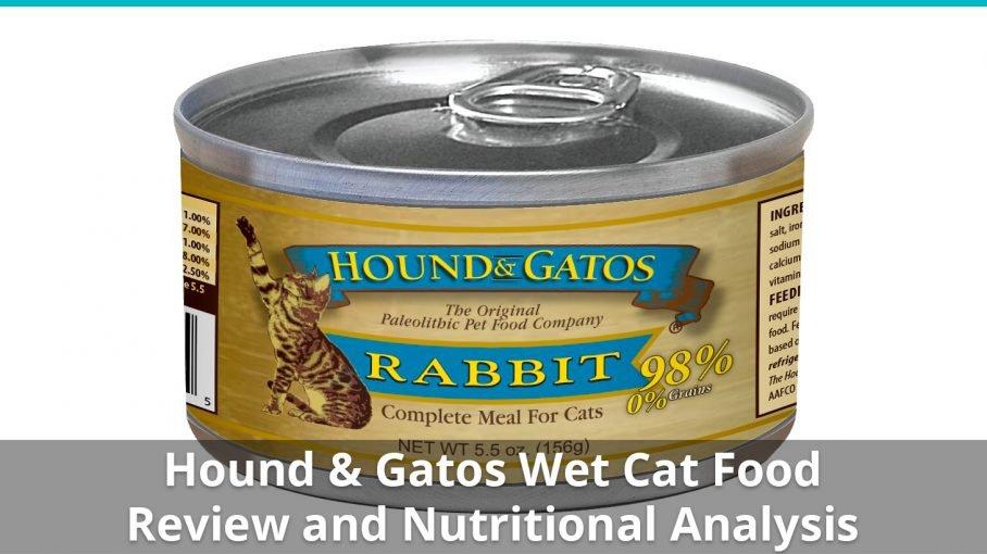 hound and gatos wet